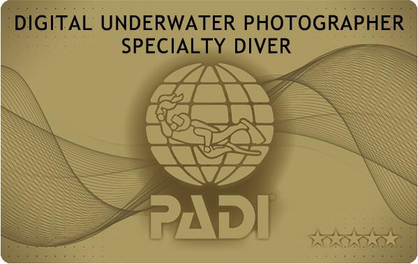 PADIデジタルカメラスペシャルティ|伊豆っこダイビング