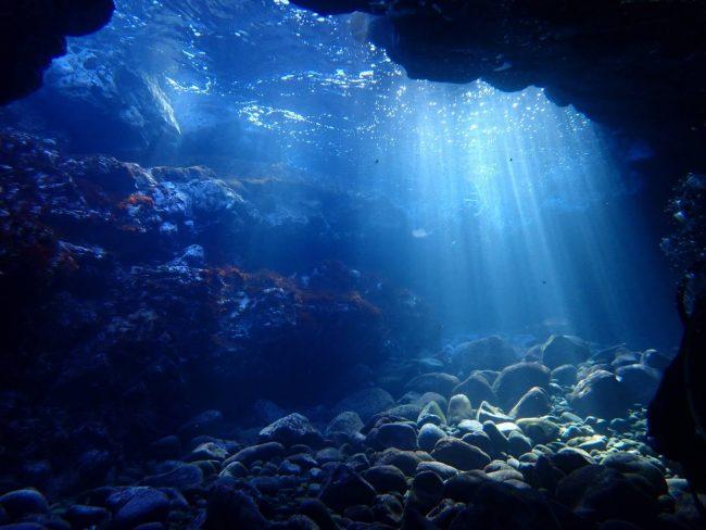 滅多に行かない富戸でダイビングしてきました(^^♪。2021-01-09