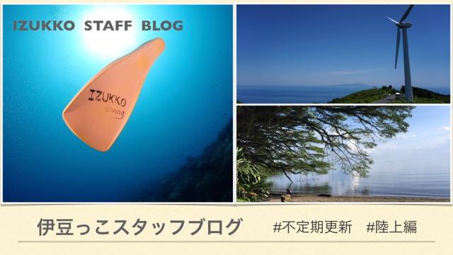 伊豆っこダイビングのスタッフブログ
